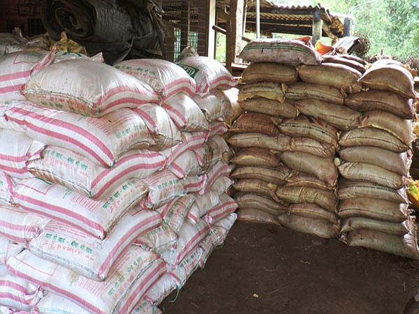 Things to know before buying Fertilizers Tips for Former's