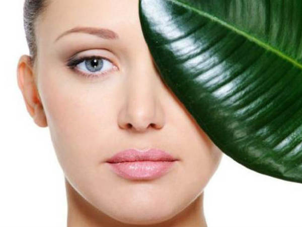 Health benefits of Spinach (Palak) Leaves