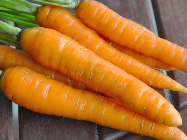 Carrots top 10 healthy benefits in kannada everybody must read 3