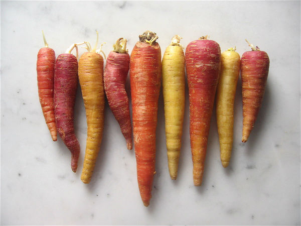 Carrots top 10 healthy benefits in kannada everybody must read 5