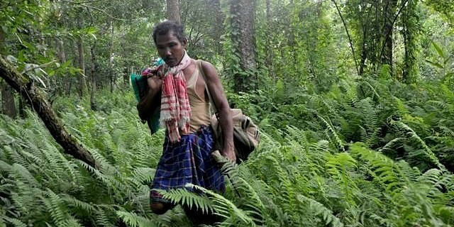 Forest Man who spent 37 years to plant whole Forest Jadav Payeng 2