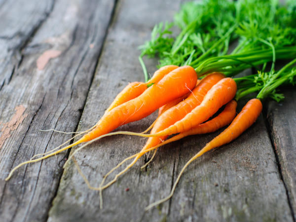 Fun Facts about Carrots the second most popular vegetable 2
