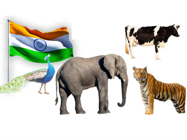 list of nations national animals are here in kannada
