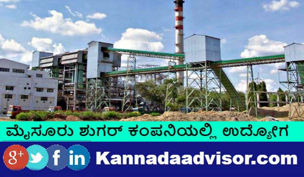 Mysore Sugar Company recruitment through direct interview